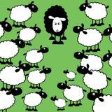 黑色系列绵羊 免版税库存图片
