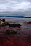 黑色红海水 库存照片
