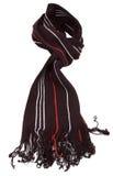 黑色红色围巾镶边白色 库存照片