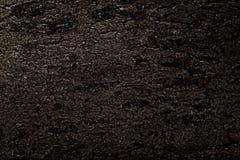 黑色纹理 被烧的煤炭树的纹理 免版税库存照片