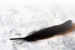 黑色羽毛 库存照片
