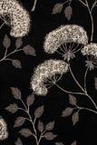 黑色花卉模式白色 免版税库存照片