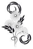 黑色花束白色 库存图片