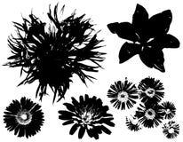 黑色花概述向量 免版税库存图片