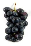 黑色葡萄 免版税图库摄影
