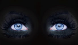 黑色蓝色darked眼睛面对构成豹妇女 免版税库存照片