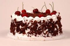 黑色蛋糕樱桃森林 库存图片