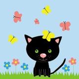 黑色蝴蝶小猫 免版税库存照片