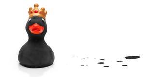 黑色被加冠的鸭子橡胶 图库摄影