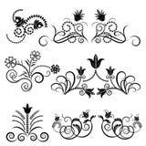 黑色设计花卉白色 免版税库存照片