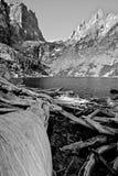 黑色鲜绿色湖白色 免版税库存图片