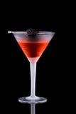 黑色鸡尾酒马蒂尼鸡尾酒多数普遍的系列 库存图片