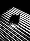 黑色&空白镶边茶壶反映 库存照片