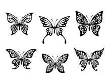 黑色蝴蝶纹身花刺 库存图片