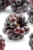黑莓关闭  库存照片