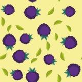 黑莓动画片无缝的纹理653 库存照片