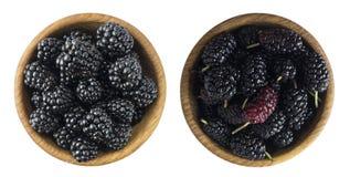 黑莓和桑树在一个木碗有拷贝空间的为 库存照片