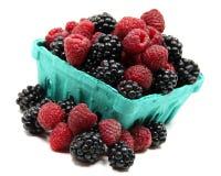 黑莓品脱莓 图库摄影