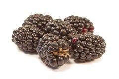 黑莓在白色背景隔绝的果子堆 免版税库存照片