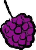 黑莓果子 免版税图库摄影