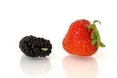 黑莓草莓 免版税库存照片