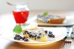 黑莓蛋糕 免版税库存照片