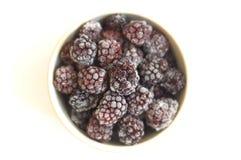 黑莓黏土冻结的牌照 库存图片