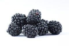 黑莓 免版税库存图片