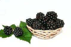 黑莓 库存照片