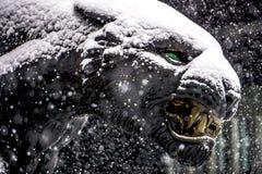 黑豹雕象被看见的失败的雪剥落 免版税图库摄影