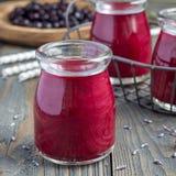 黑醋栗,希腊酸奶、蜂蜜和淡紫色圆滑的人在玻璃瓶子,方形的格式 库存图片