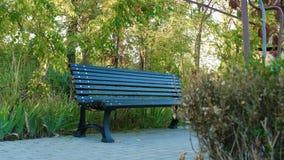 黑长凳在公园 股票视频