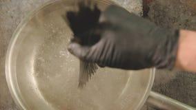 黑食物厨师投掷乌贼墨水面团的开水 影视素材