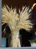 黑麦的耳朵花束  库存图片