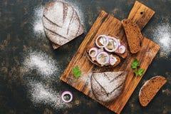 黑麦面包和切片一条鲱鱼用葱 顶视图,拷贝空间 图库摄影