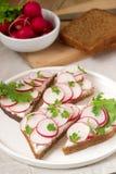 黑麦面包开胃三明治用凝乳酪、萝卜和莴苣 土气样式 免版税库存照片