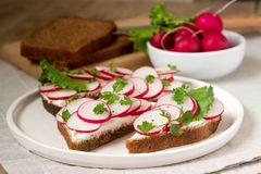 黑麦面包开胃三明治用凝乳酪、萝卜和莴苣 土气样式 免版税图库摄影