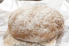 黑麦面包面团上升 免版税库存图片