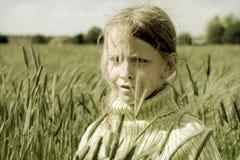 黑麦 库存图片