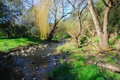 黑紫色的小河 库存图片