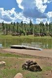 黑Canyon湖,纳瓦霍县,亚利桑那,美国,亚帕基Sitegreaves国家森林 免版税库存图片