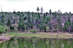 黑Canyon湖,纳瓦霍县,亚利桑那,美国,亚帕基Sitegreaves国家森林 免版税图库摄影