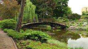 黑T恤杉的年轻人是在桥梁,拍在电话美丽的景色的照片 股票录像
