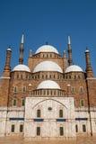 默罕默德・阿里清真寺 免版税库存照片