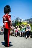 鼓手招待在加拿大日的人群 免版税库存照片