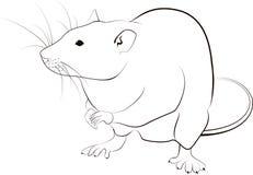 鼠剪影 免版税库存照片