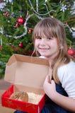 仓鼠当前为圣诞节 库存图片