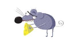 鼠或老鼠窃取了乳酪片断  图库摄影