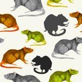 鼠无缝的样式 灰色,黄色和棕色手画老鼠、外形和剪影 免版税库存照片