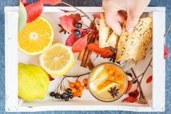 鼠李热的饮料用柠檬和曲奇饼 图库摄影